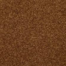 Shaw Floors Value Collections Passageway 1 12 Net Camel 00204_E9152