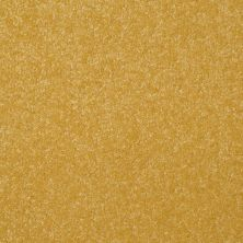 Shaw Floors Value Collections Passageway 1 12 Net Daffodil 00205_E9152