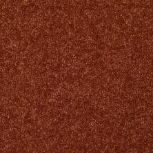 Shaw Floors Value Collections Passageway 1 12 Net Maple Leaf 00601_E9152