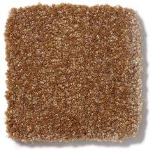 Shaw Floors Value Collections Passageway 1 12 Net Brass Button 00704_E9152