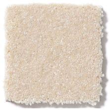 Shaw Floors Value Collections Passageway 3 12 Net Cream 00101_E9154