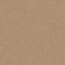 Shaw Floors Value Collections Passageway 3 12 Net Muffin 00106_E9154