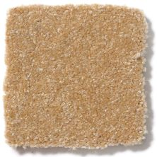 Shaw Floors Value Collections Passageway 3 12 Net Straw Hat 00201_E9154