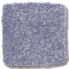 Shaw Floors Value Collections Passageway 3 12 Net Periwinkle 00408_E9154