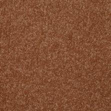Shaw Floors Value Collections Passageway 3 12 Net Soft Copper 00600_E9154