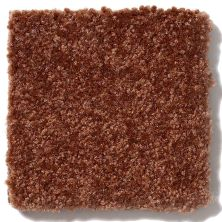 Shaw Floors Value Collections Passageway 3 12 Net Gingerbread 00602_E9154