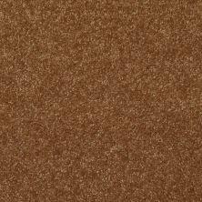 Shaw Floors Value Collections Passageway 3 12 Net Brass Button 00704_E9154
