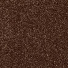Shaw Floors Value Collections Passageway 3 12 Net Mocha Chip 00705_E9154