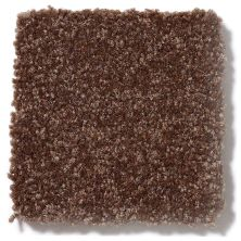 Shaw Floors Value Collections Passageway 3 12 Net Mocha Chip 00705_E9154