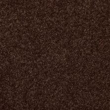 Shaw Floors Value Collections Passageway 3 12 Net Walnut 00706_E9154