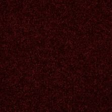 Shaw Floors Value Collections Passageway 3 12 Net Bordeaux 00805_E9154