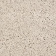 Shaw Floors Value Collections Thrive Net Silken Sand 00101_E9169