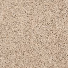 Shaw Floors Value Collections Thrive Net New Pastry 00105_E9169