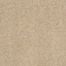 Shaw Floors Value Collections Thrive Net Wild Straw 00106_E9169