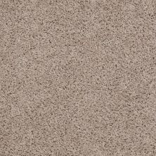 Shaw Floors Value Collections Thrive Net Birch Bark 00107_E9169