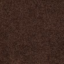 Shaw Floors Value Collections Thrive Net Dark Fudge 00701_E9169