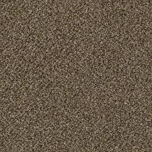 Shaw Floors Biltmore Pinecone GF00701_E9188