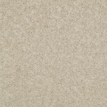 Shaw Floors Value Collections Dyersburg Classic 15′ Net Sand Dollar 00116_E9193