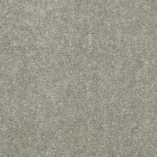 Shaw Floors Value Collections Dyersburg Classic 15′ Net Pebble Path 00132_E9193