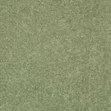 Shaw Floors Value Collections Dyersburg Classic 15′ Net Going Green 00330_E9193