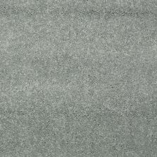 Shaw Floors Value Collections Dyersburg Classic 15′ Net Haze 00531_E9193