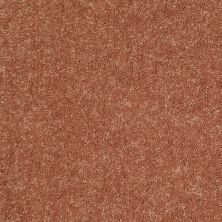 Shaw Floors Value Collections Dyersburg Classic 15′ Net Sunburst 00630_E9193