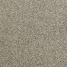 Shaw Floors Value Collections Dyersburg Classic 15′ Net Suede 00731_E9193
