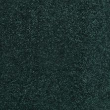 Shaw Floors Value Collections Dyersburg Classic 15′ Net Polo 55301_E9193