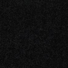 Shaw Floors Value Collections Dyersburg Classic 15′ Net Coal Black 55502_E9193