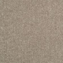 Shaw Floors Value Collections Dyersburg Classic 15′ Net Taupe Mist 55792_E9193