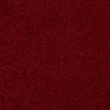 Shaw Floors Value Collections Dyersburg Classic 15′ Net Crimson 55803_E9193