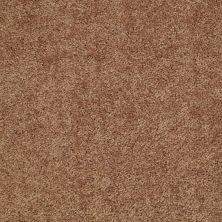 Shaw Floors Value Collections Briceville Classic 12′ Net Desert Sunrise 00721_E9196