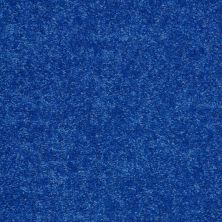 Shaw Floors Value Collections Briceville Classic 12′ Net Cobalt 55453_E9196