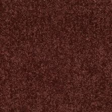 Shaw Floors Value Collections Briceville Classic 12′ Net Coffee 55755_E9196