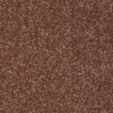 Shaw Floors Value Collections Briceville Classic 12′ Net Winter Wheat 55791_E9196
