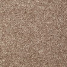 Shaw Floors Value Collections Briceville Classic 12′ Net Dusty Trail 55793_E9196