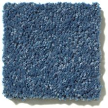 Shaw Floors Value Collections Briceville Classic 15′ Net Indigo 00441_E9197