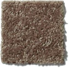 Shaw Floors Value Collections Briceville Classic 15′ Net Landslide 00702_E9197
