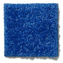 Shaw Floors Value Collections Briceville Classic 15′ Net Cobalt 55453_E9197