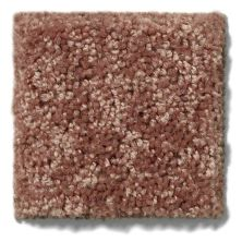 Shaw Floors Value Collections Briceville Classic 15′ Net Winter Wheat 55791_E9197