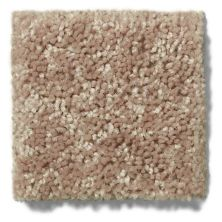 Shaw Floors Value Collections Briceville Classic 15′ Net Dusty Trail 55793_E9197