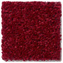 Shaw Floors Value Collections Briceville Classic 15′ Net Crimson 55803_E9197