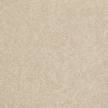 Shaw Floors Value Collections Newbern Classic 12′ Net Crisp Linen 00109_E9198