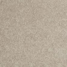 Shaw Floors Value Collections Newbern Classic 12′ Net Antique Silk 00131_E9198