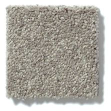 Shaw Floors Value Collections Newbern Classic 12′ Net Pebble Path 00132_E9198