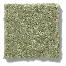Shaw Floors Value Collections Newbern Classic 12′ Net Going Green 00330_E9198