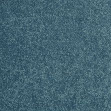 Shaw Floors Value Collections Newbern Classic 12′ Net Ocean 00430_E9198