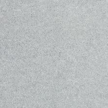 Shaw Floors Value Collections Newbern Classic 12′ Net Morning Fog 00530_E9198