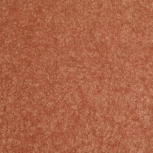 Shaw Floors Value Collections Newbern Classic 12′ Net Sunburst 00630_E9198
