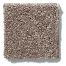 Shaw Floors Value Collections Newbern Classic 12′ Net Suede 00731_E9198